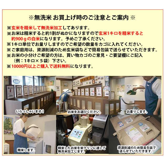 横尾yw-10のブログ